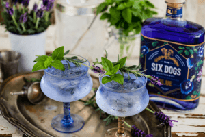 Bouteille de six dogs Blue avec deux verres de cocktails